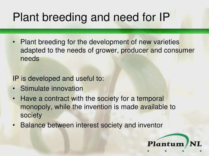 Plant breeding and need for IP