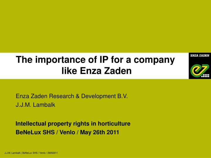 The importance of IP for a company