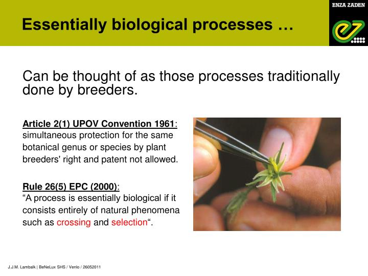 Essentially biological processes …
