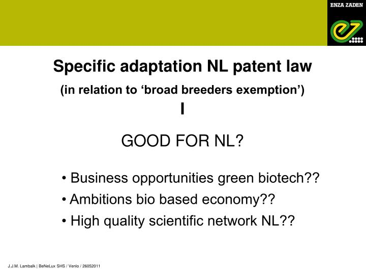 Specific adaptation NL patent law