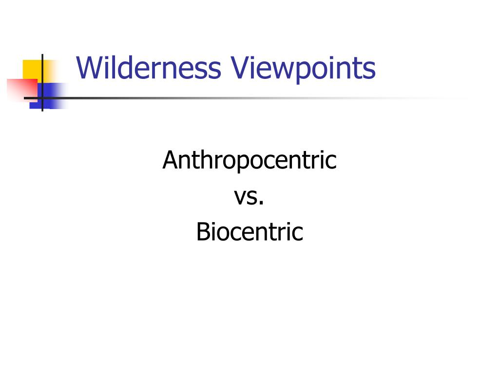 wilderness viewpoints l.