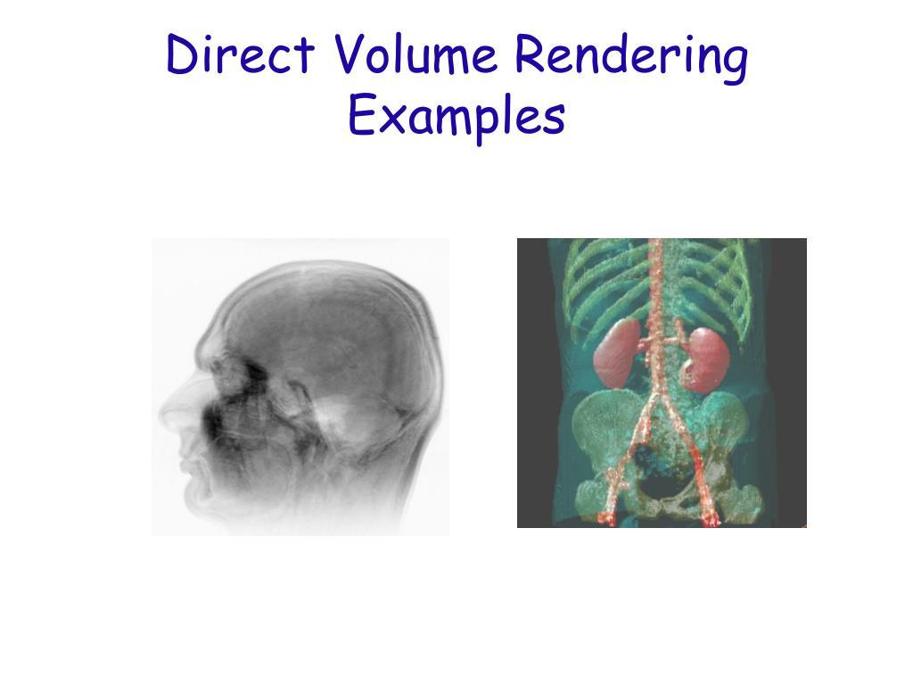 Direct Volume Rendering Examples