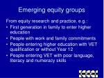 emerging equity groups