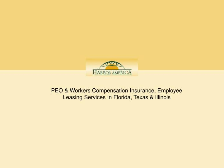 PEO & Workers Compensation Insurance, Employee Leasing Services In Florida, Texas & Illinois