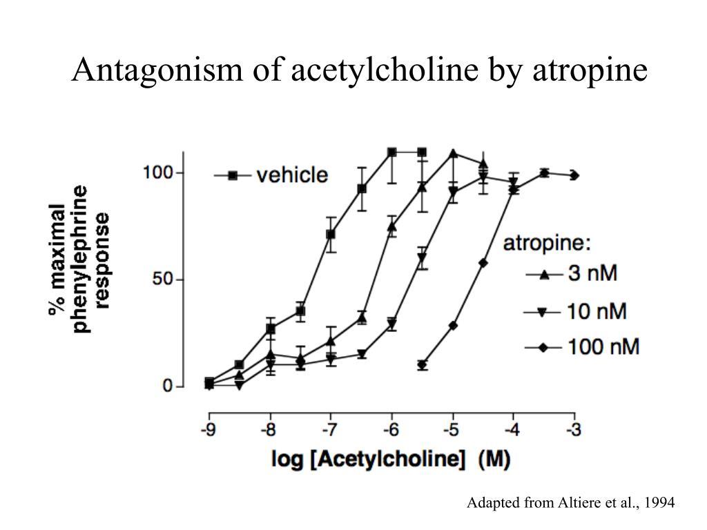 Antagonism of acetylcholine by atropine