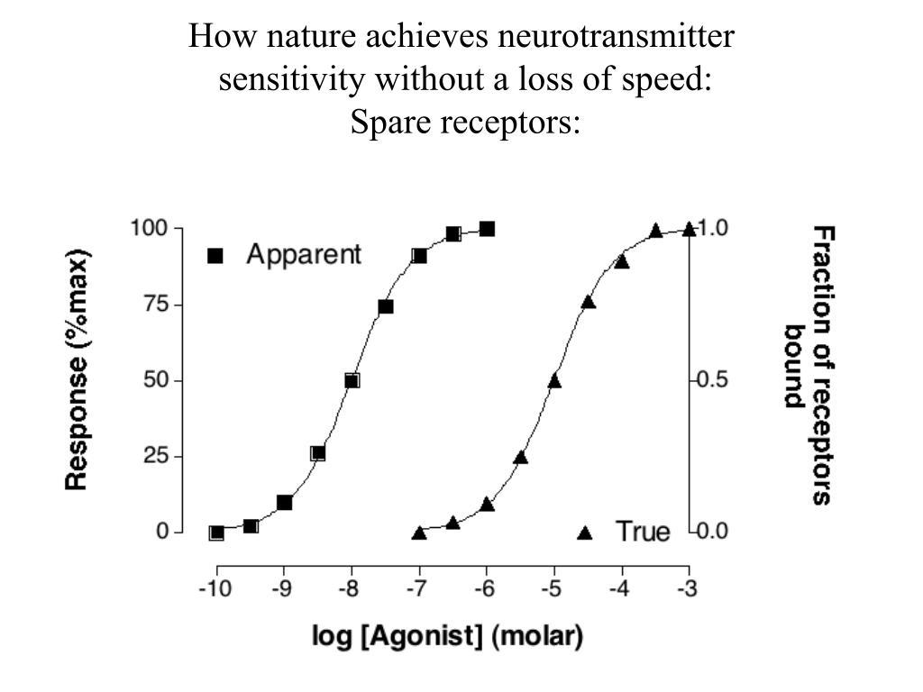 How nature achieves neurotransmitter