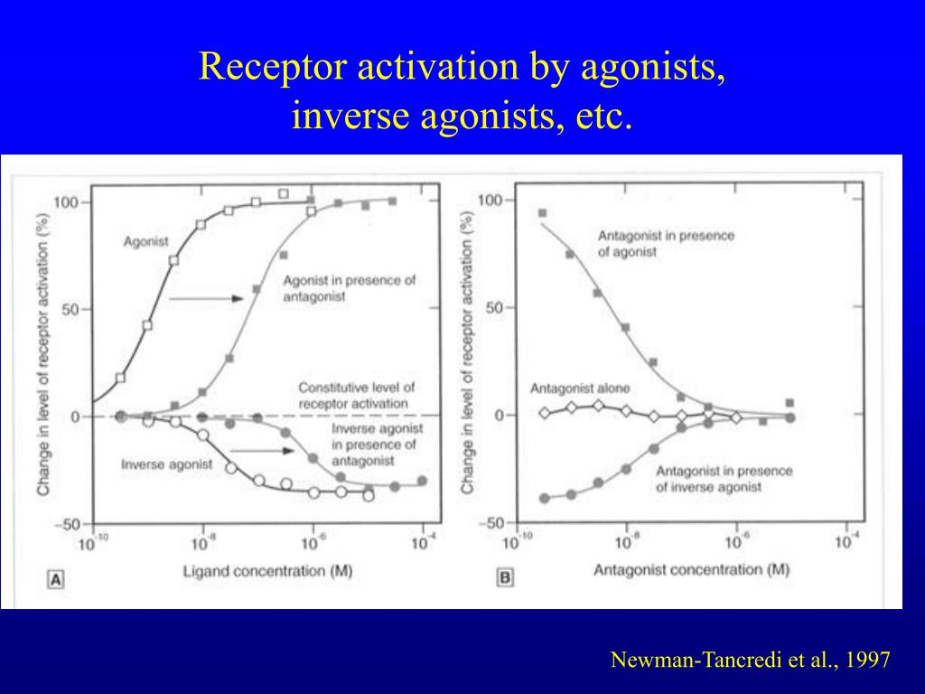 Receptor activation by agonists,