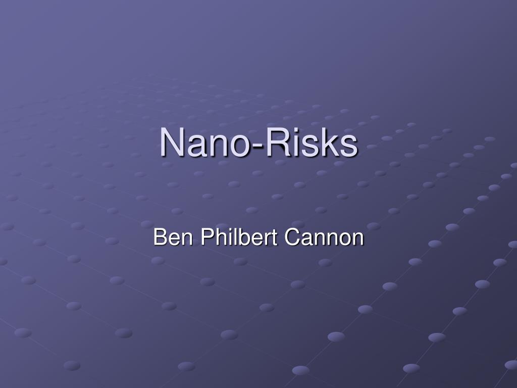 nano risks l.