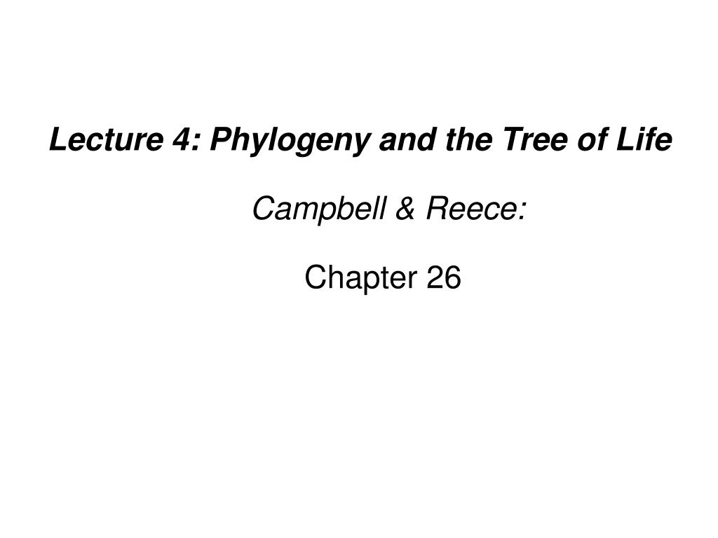 lecture 4 phylogeny and the tree of life campbell reece chapter 26 l.