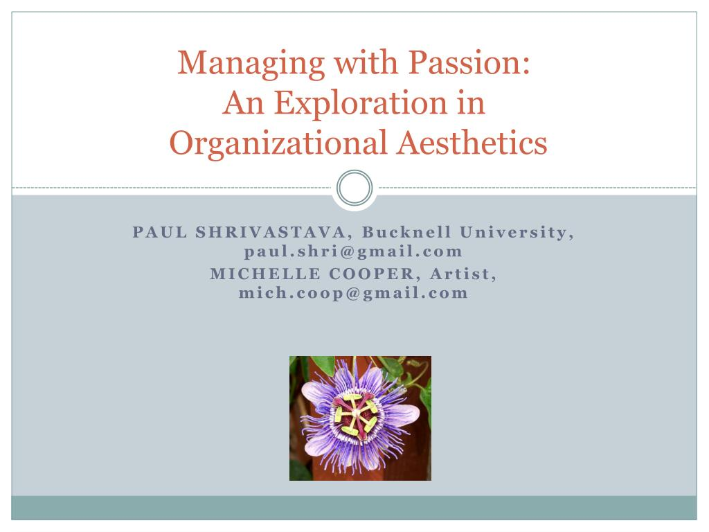 managing with passion an exploration in organizational aesthetics l.