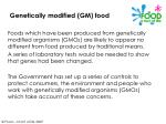 genetically modified gm food