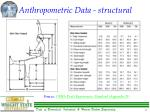 anthropometric data structural13