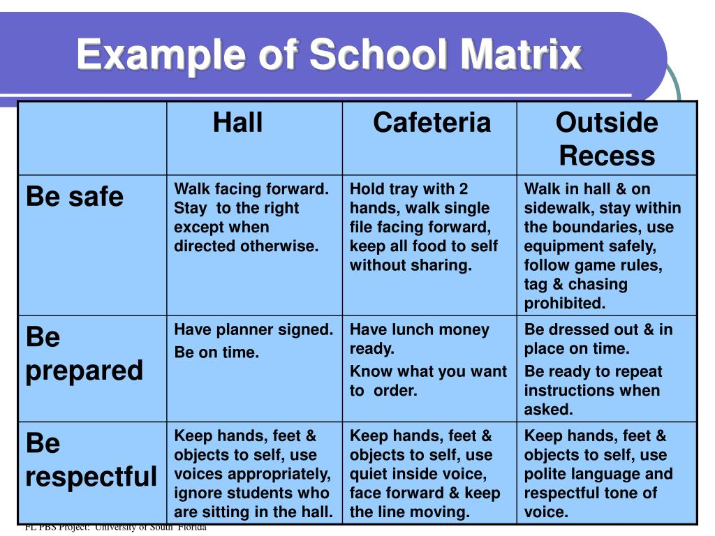 Example of School Matrix