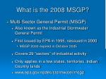 what is the 2008 msgp