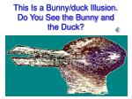 this is a bunny duck illusion do you see the bunny and the duck