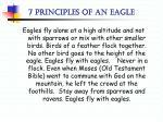 7 principles of an eagle2