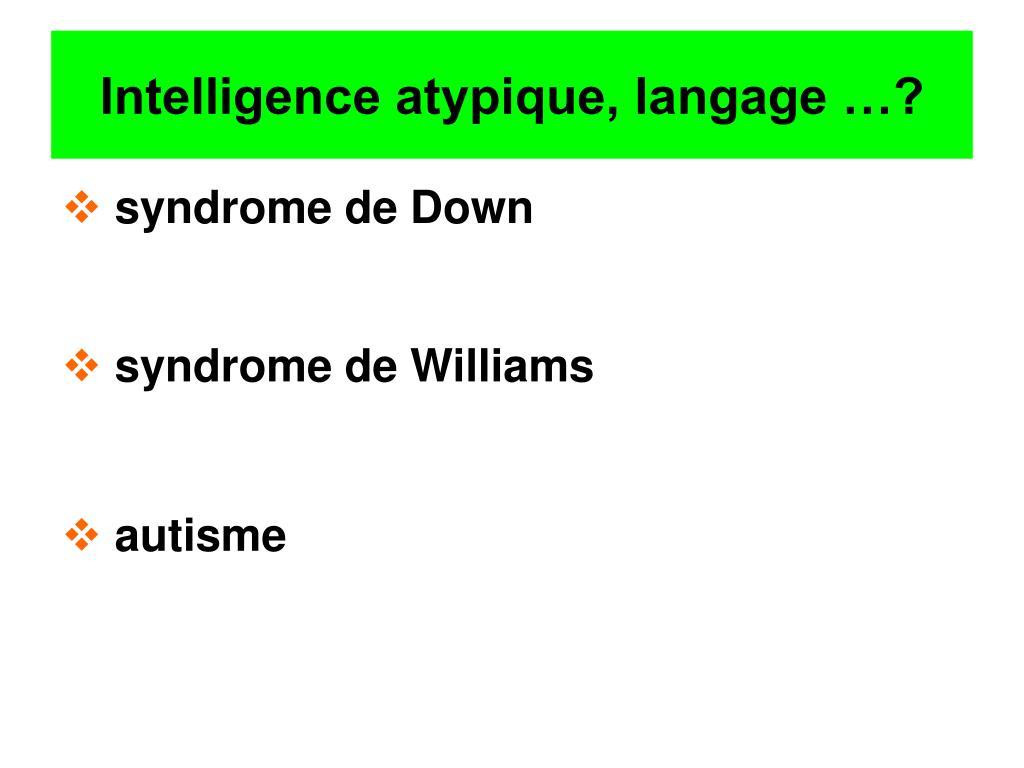 Intelligence atypique, langage …?
