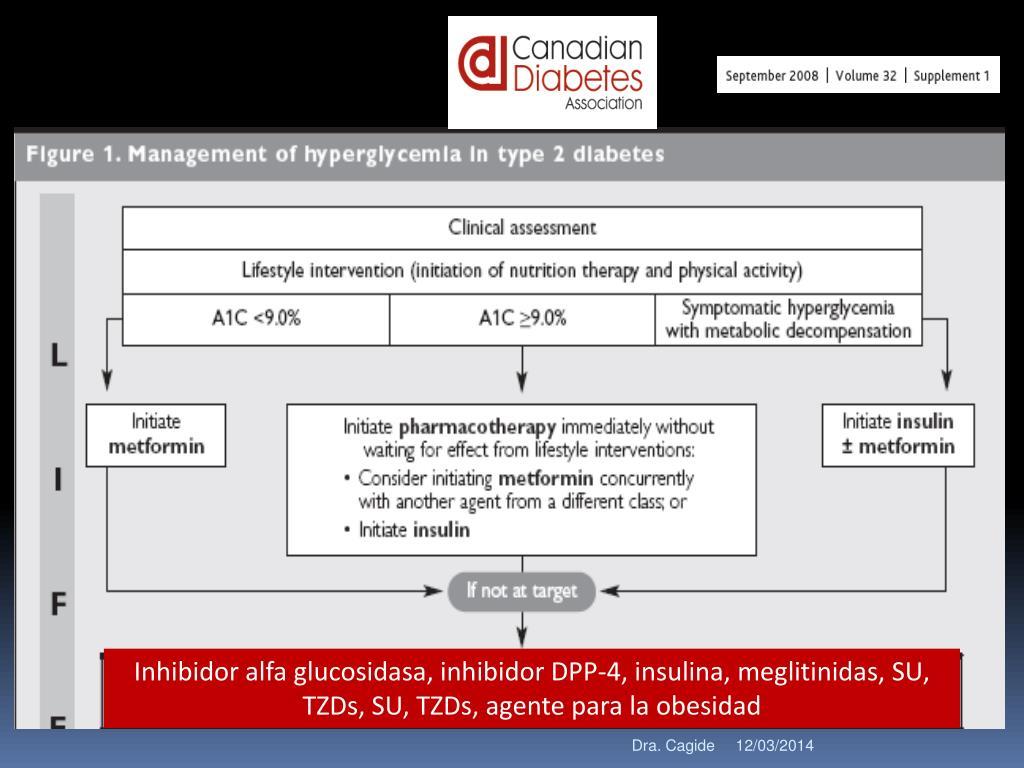 Inhibidor alfa glucosidasa, inhibidor DPP-4, insulina, meglitinidas, SU, TZDs, SU, TZDs, agente para la obesidad