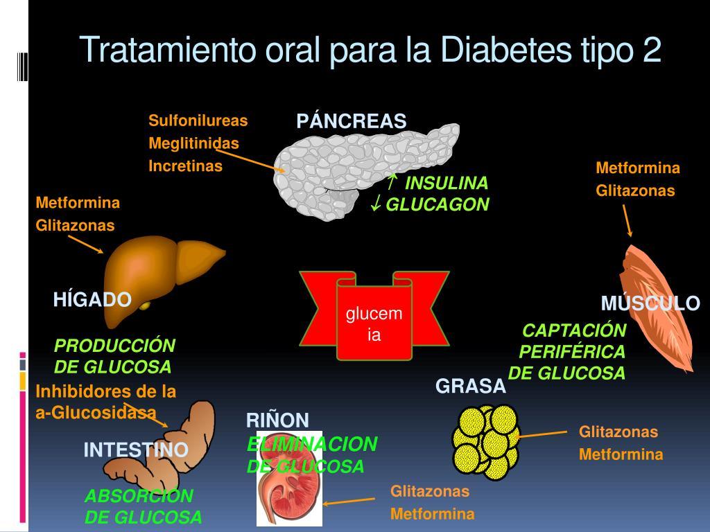 Tratamiento oral para la Diabetes tipo 2