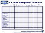 6 2 3 risk management for pb free