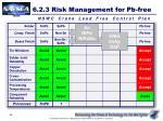 6 2 3 risk management for pb free4