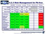 6 2 3 risk management for pb free6