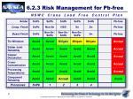 6 2 3 risk management for pb free7