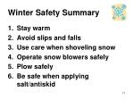 winter safety summary