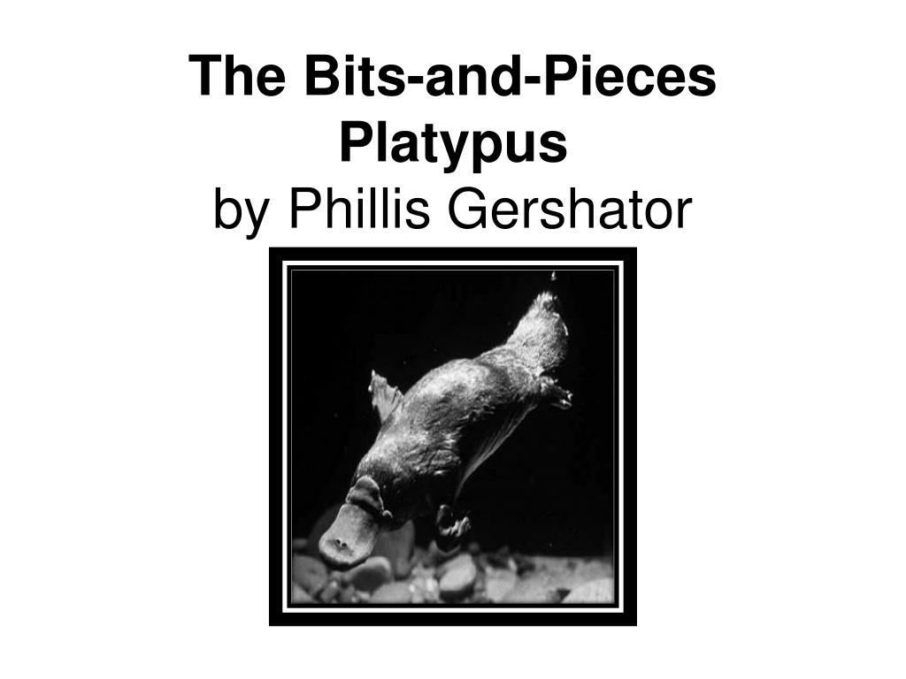 the bits and pieces platypus by phillis gershator l.