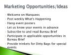marketing opportunities ideas
