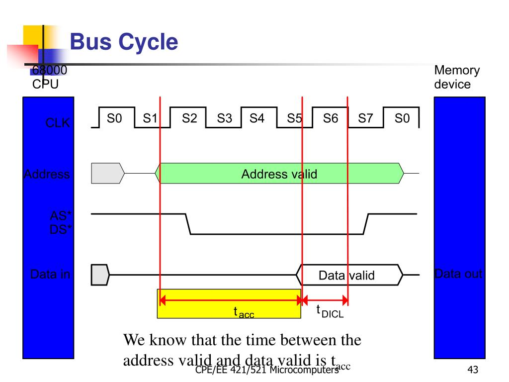 Bus Cycle
