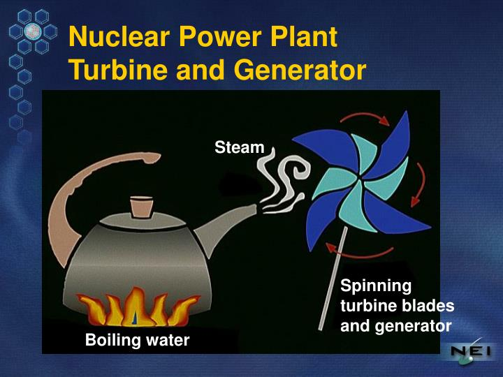 Nuclear power plant turbine and generator
