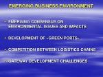 emerging business environment