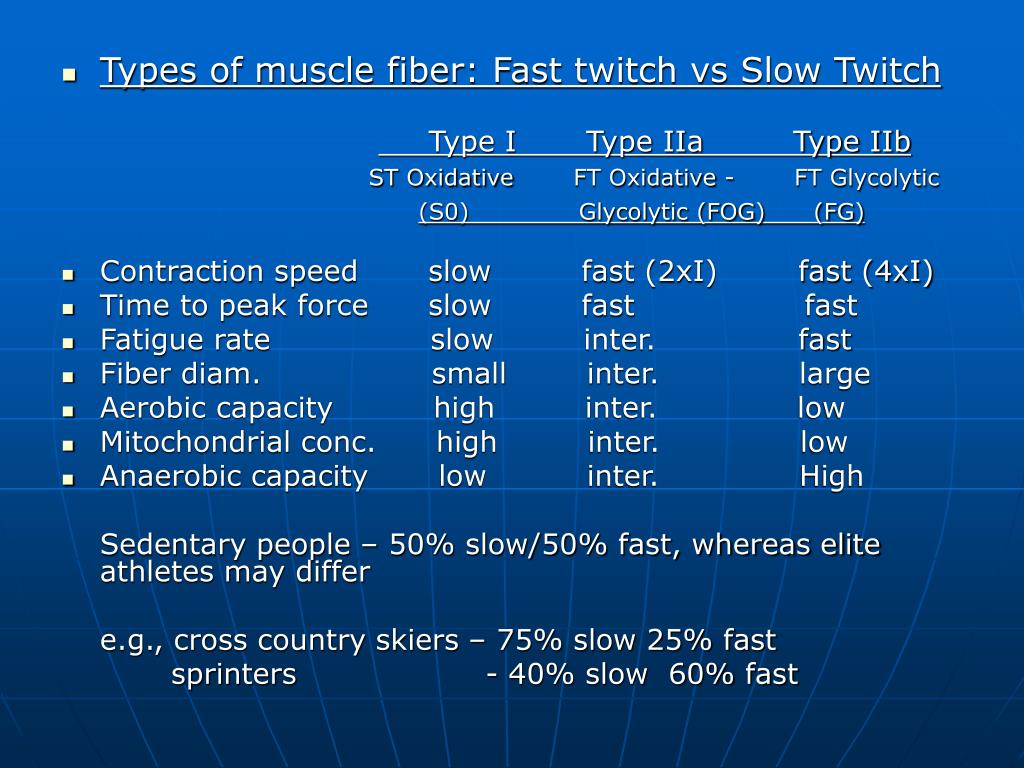 Types of muscle fiber: Fast twitch vs Slow Twitch