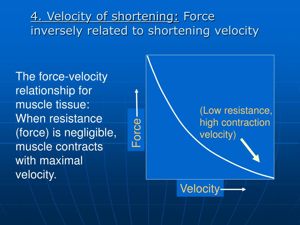 (Low resistance, high contraction velocity)