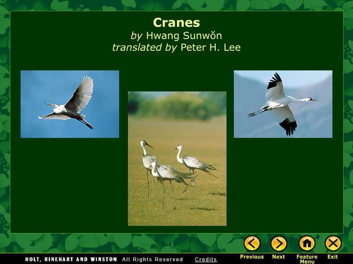 Cranes by hwang sunw n translated by peter h lee1