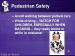 pedestrian safety16