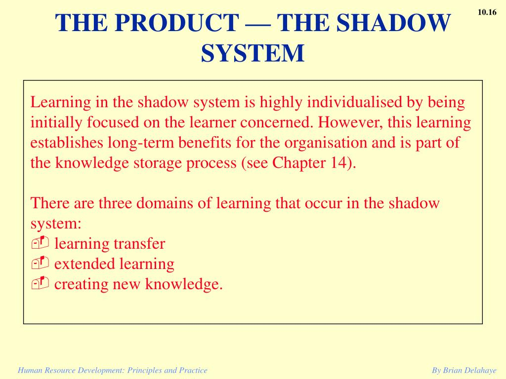 THE PRODUCT — THE SHADOW SYSTEM