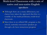 multi level classrooms with a mix of native and non native english speakers