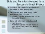 skills and functions needed for a successful small project