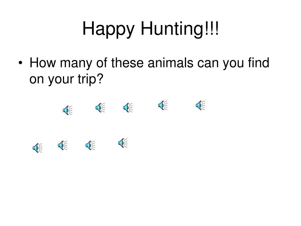 Happy Hunting!!!