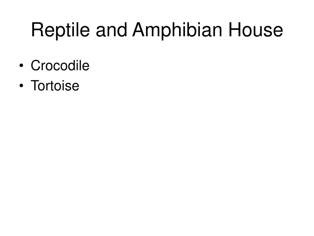 Reptile and Amphibian House