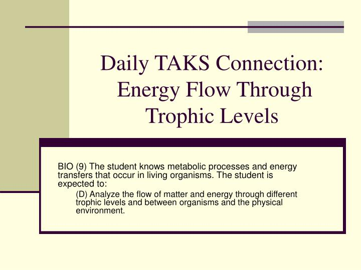 daily taks connection energy flow through trophic levels n.