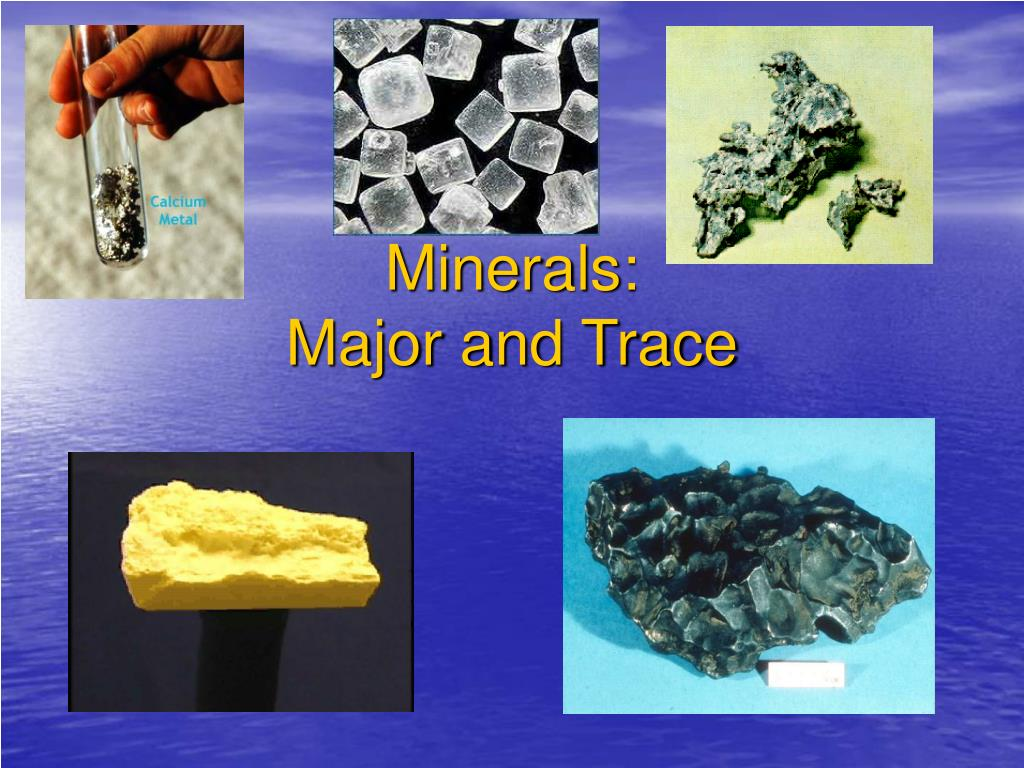 major contributions of minerals to the My list of the major contributors to microbiology: anton van leeuwonhoek was adutch pasteur's phenomenal contributions to microbiology and medicine can be summarized as follows what are the contributions of edward jenner and christian gram to the development of microbiology.