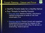 forest planning issues and focus