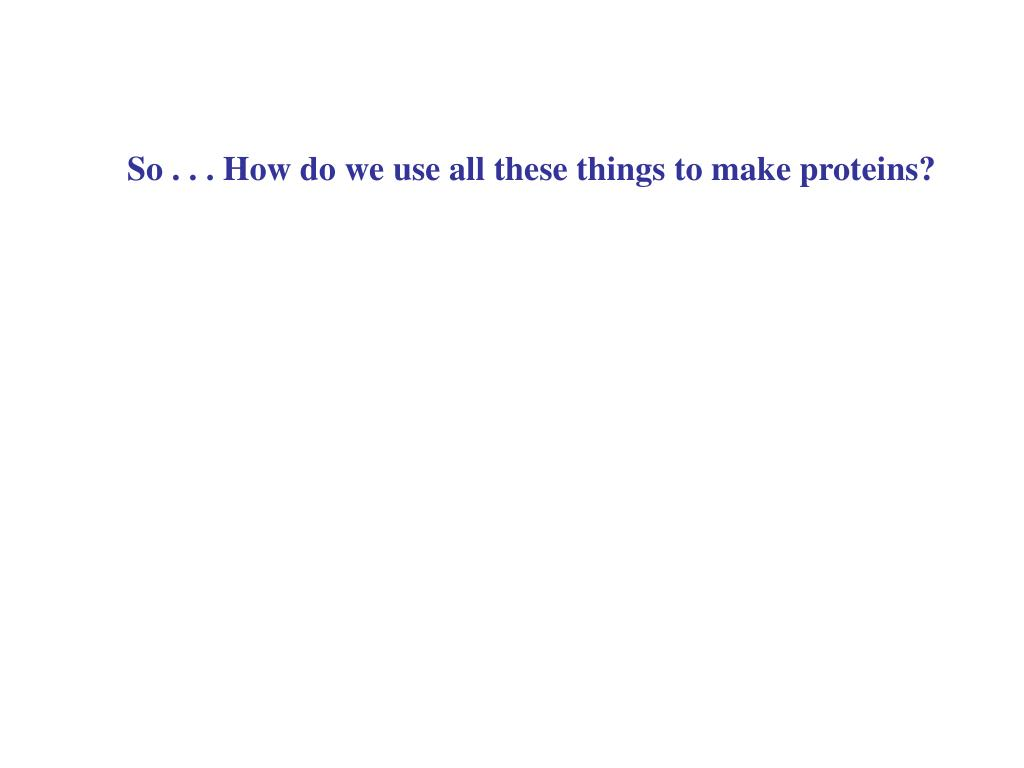 So . . . How do we use all these things to make proteins?