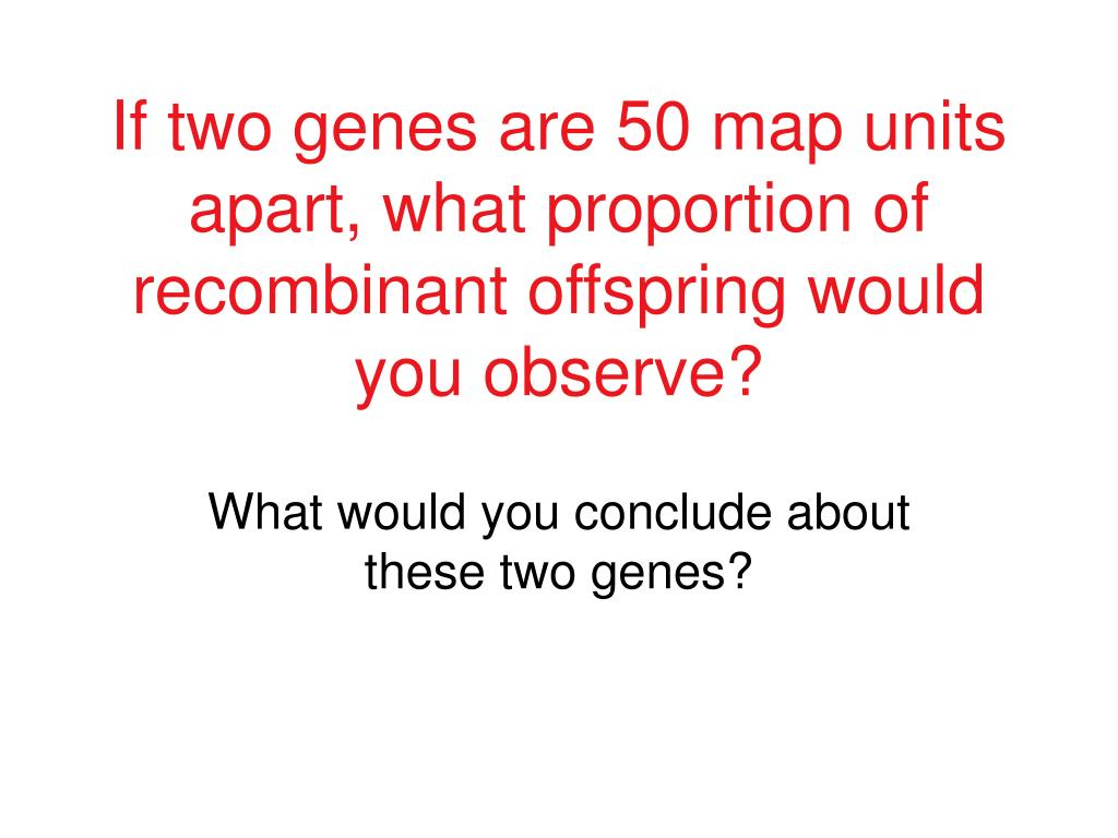 If two genes are 50 map units apart, what proportion of recombinant offspring would you observe?