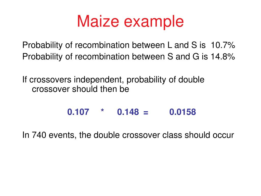 Maize example