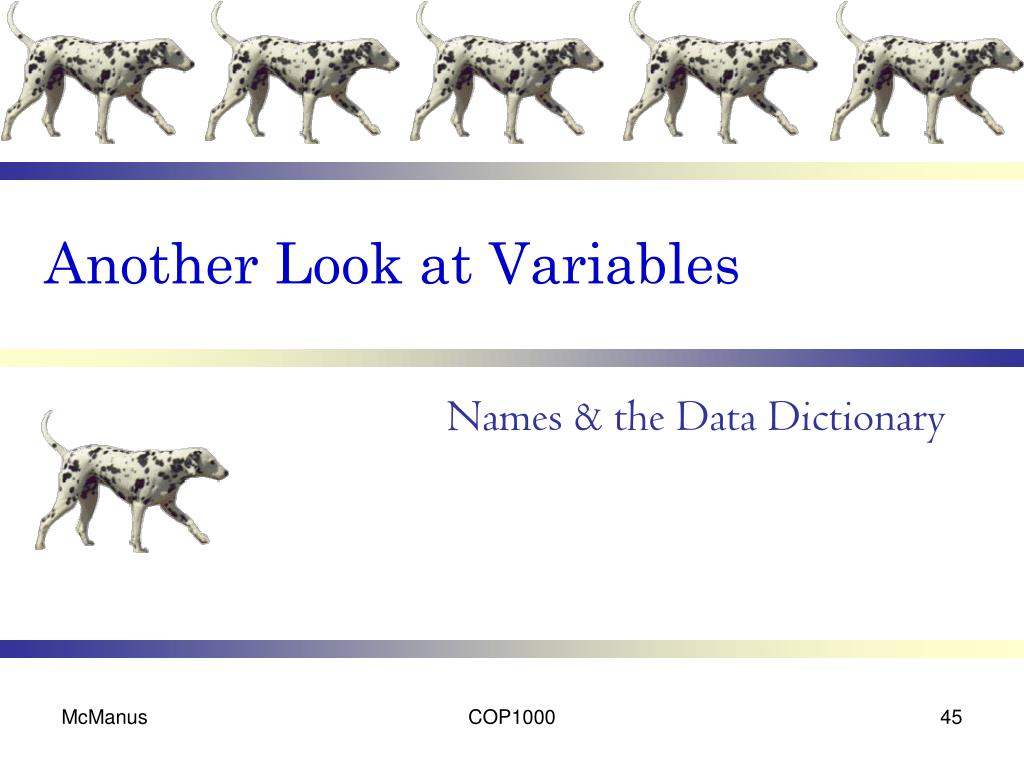 Another Look at Variables