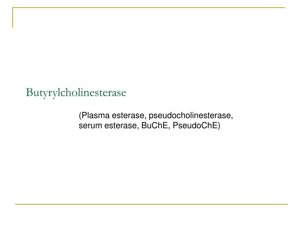 Butyrylcholinesterase
